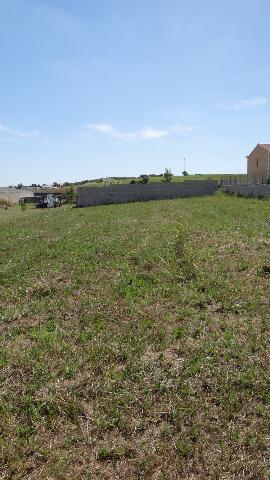 Vente - Terrain à bâtir - Châteauneuf-sur-Charente - 1000.00m² - Ref : 444