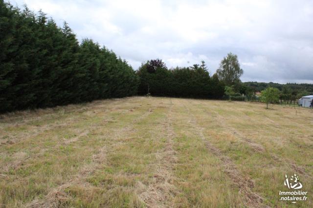 Vente - Terrain agricole - Chassenon - 1600.00m² - Ref : C701