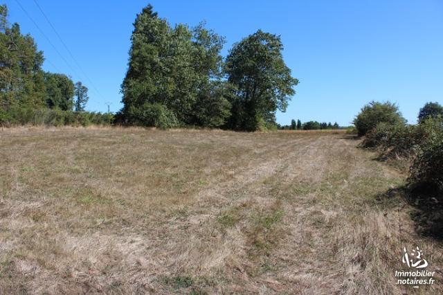 Vente - Terrain agricole - Chabanais - 2866.00m² - Ref : EC610