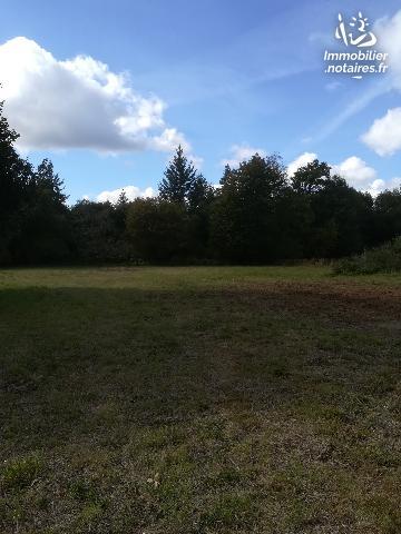 Vente - Terrain agricole - Mesnil-Roc'h - 585.0m² - Ref : 114