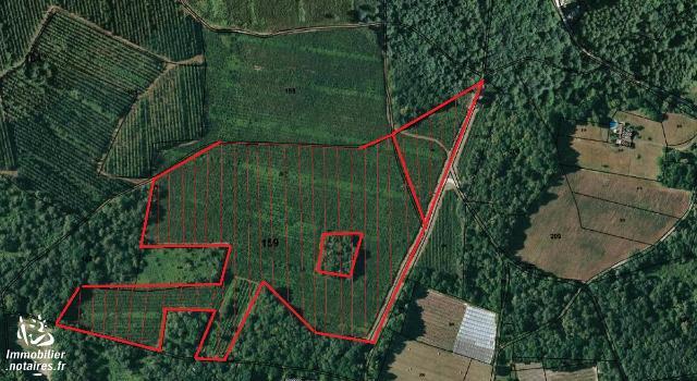 Vente aux Enchères - Terrain agricole - Marsaneix - 77050.00m² - Ref : 170533vae027