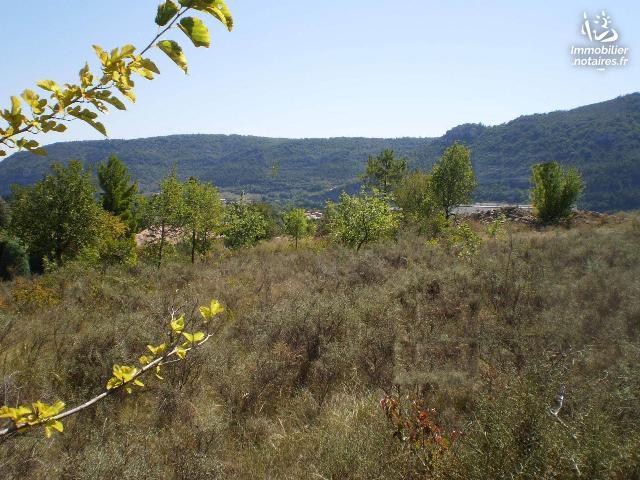 Vente - Terrain agricole - Saint-Julien-en-Saint-Alban - 2353.00m² - Ref : PR314K