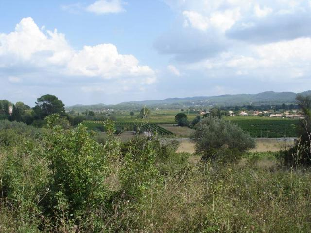 Vente - Terrain à bâtir - Montfort-sur-Argens - 548.00m² - Ref : 29054/76
