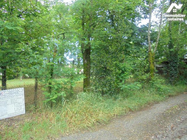 Vente - Terrain agricole - Buzet-sur-Baïse - 2037.0m² - Ref : 229