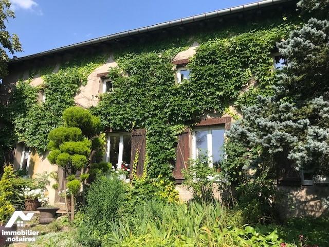 Vente - Maison - Salonnes - 307.0m² - 8 pièces - Ref : maison