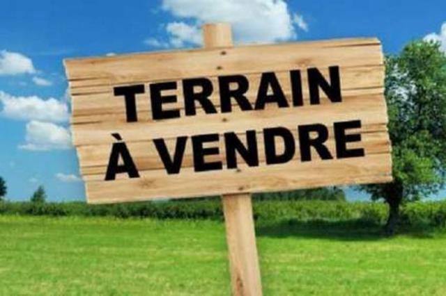 Vente - Terrain à bâtir - Lembeye - 11680.0m² - Ref : MLL