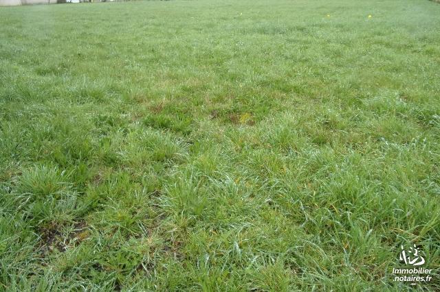 Vente - Terrain agricole - Beauvoir-sur-Niort - 1074.00m² - Ref : 247