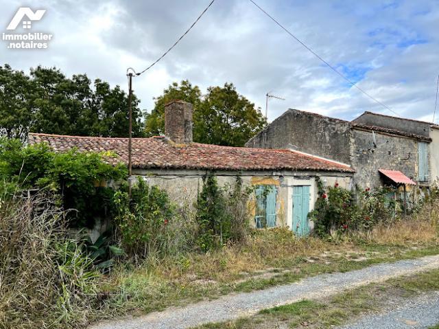 Vente - Maison - Chaillé-les-Marais - 70.0m² - 4 pièces - Ref : 85035202110H