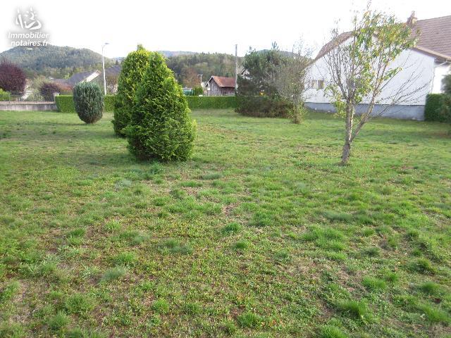 Vente - Terrain agricole - Vagney - 883.00m² - Ref : V6758