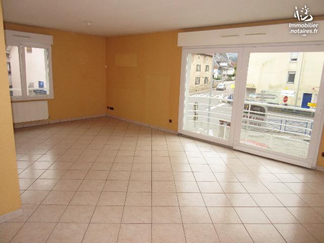 Vente - Appartement - Vagney - 93.70m² - 3 pièces - Ref : V6763