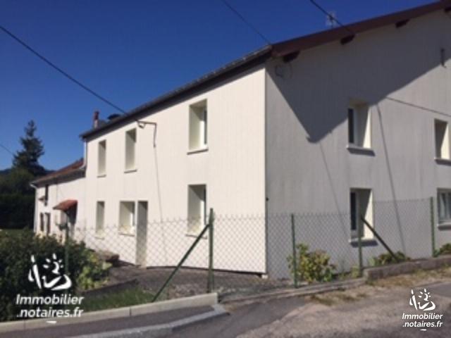 Vente - Maison - Saint-Étienne-lès-Remiremont - 200.00m² - 6 pièces - Ref : 504083