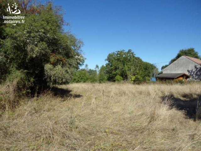 Vente - Terrain - COUZON - 3025 m² - 03007-265480