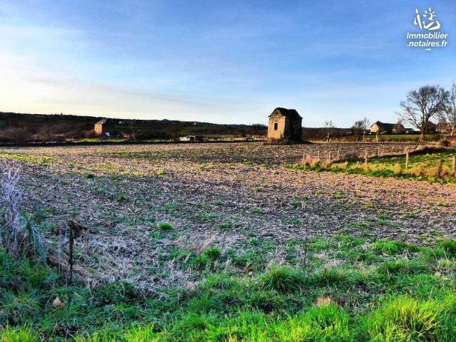 Vente - Terrain - Sauveterre-de-Rouergue - 1000.0m² - Ref : LJ758