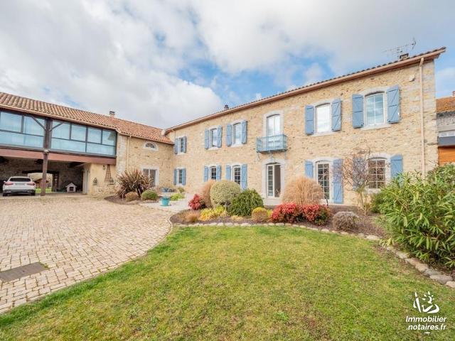 Vente - Maison - Ausson - 620.0m² - 9 pièces - Ref : LL56