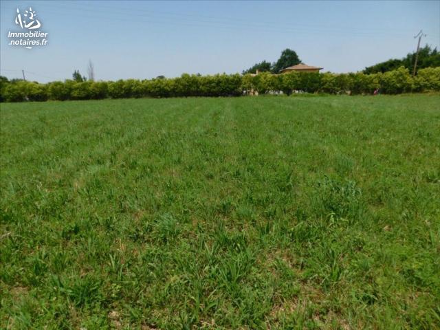 Vente - Terrain à bâtir - Martres-Tolosane - 1228.00m² - Ref : 31062-99
