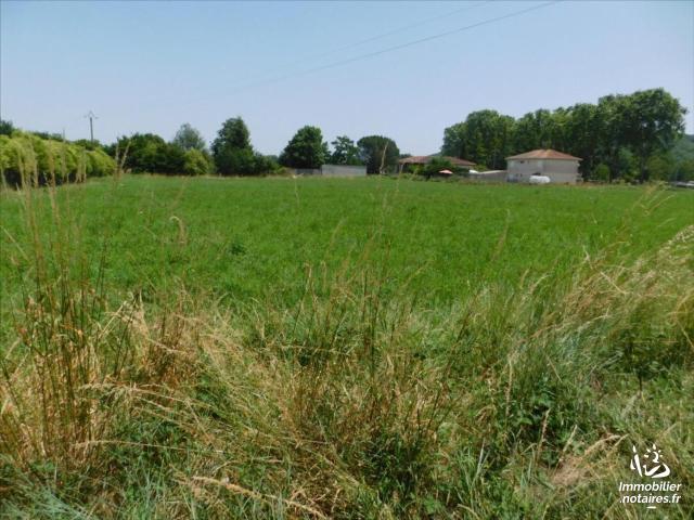 Vente - Terrain à bâtir - Martres-Tolosane - 1033.00m² - Ref : 31062-98
