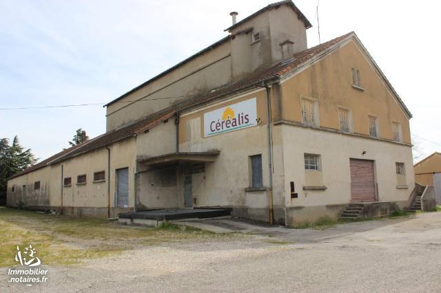 Vente - Local d'activité - Valréas - 1200.00m² - Ref : 84064-275522