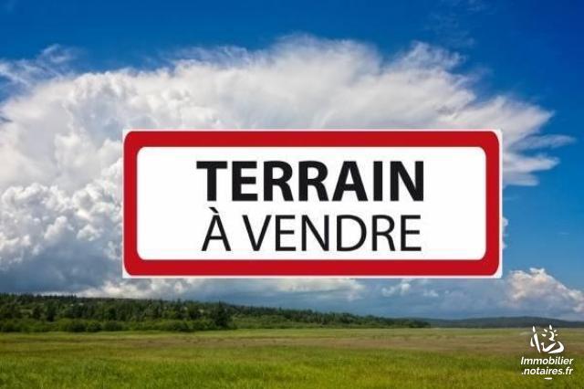 Vente - Terrain à bâtir - Xanton-Chassenon - 2918.0m² - Ref : 85059-252