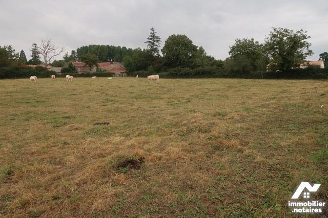 Vente - Terrain à bâtir - Saint-Sulpice-en-Pareds - 4500.0m² - Ref : 85093-3317