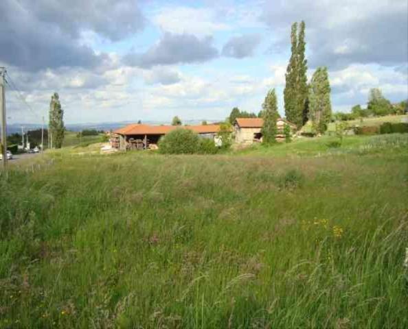 Vente - Terrain à bâtir - Margerie-Chantagret - 4447.00m² - Ref : 55/401