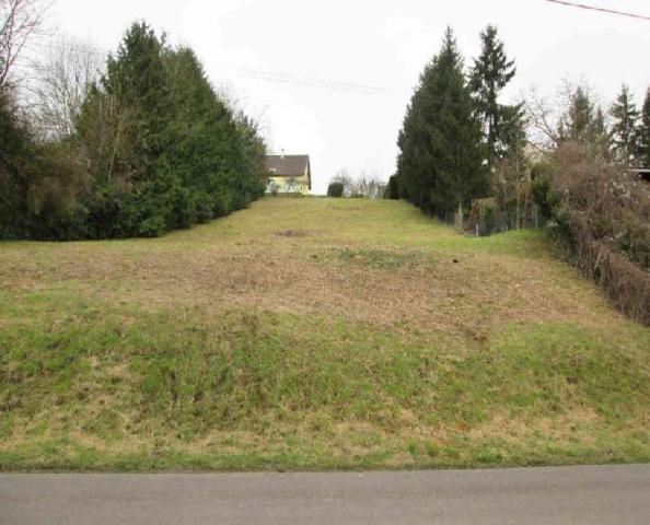 Vente - Terrain à bâtir - Saint-Julien-du-Sault - 1350.00m² - Ref : TAB 1 09 04