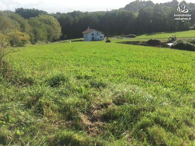 Vente - Terrain à bâtir - Arbonne - 1200.00m² - Ref : 1205905/341