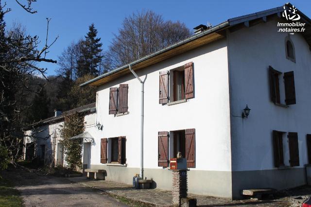 Vente - Maison - Val-d'Ajol - 180.00m² - 7 pièces - Ref : 1004773