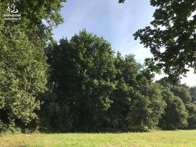 Vente - Terrain agricole - Hédé-Bazouges - 2000.00m² - Ref : 020/467